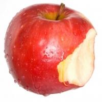 Apple_20081024_300dpi_06
