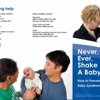 Never Shake Baby 2010.indd